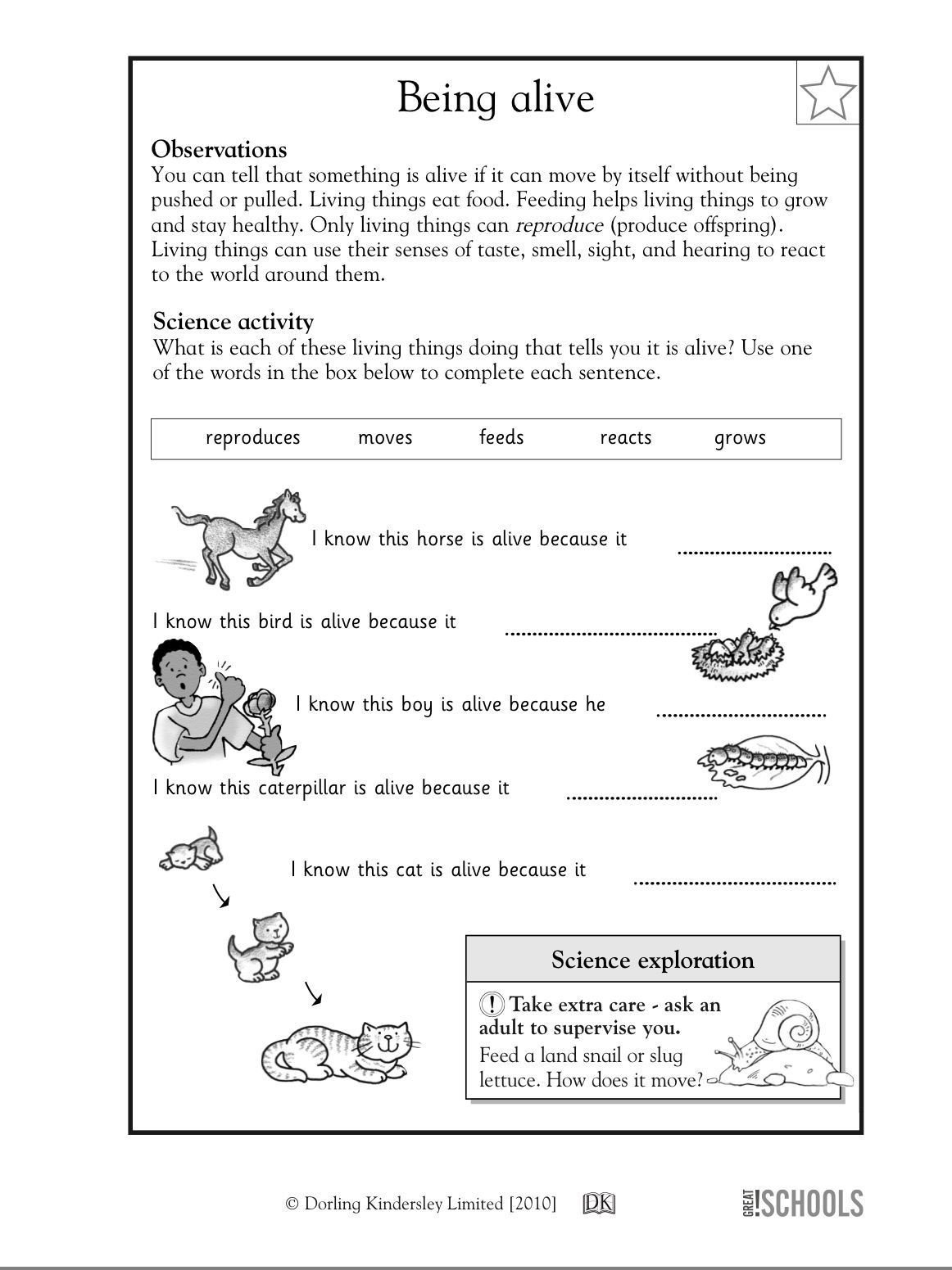 Science Worksheet 1st Grade Pin On ١٠١