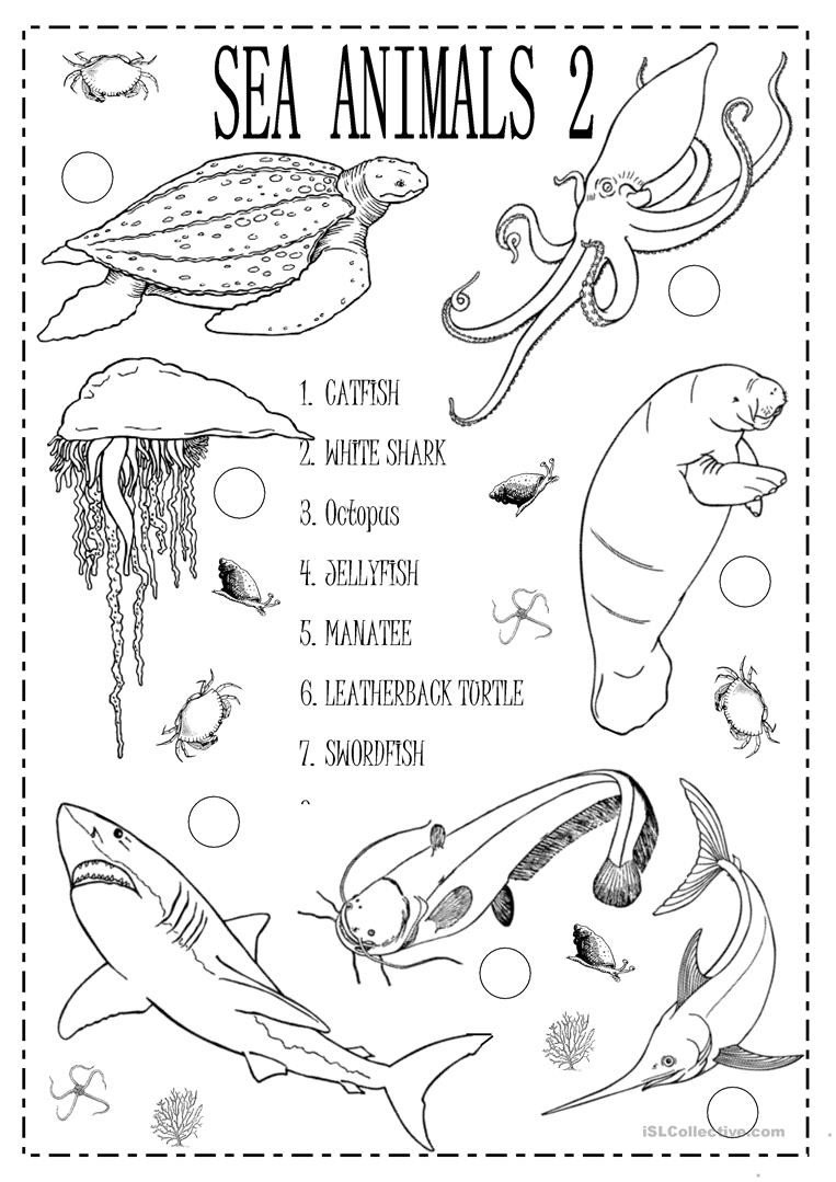 Sea Animal Worksheets English Esl Sea Animals Worksheets Most Ed 86