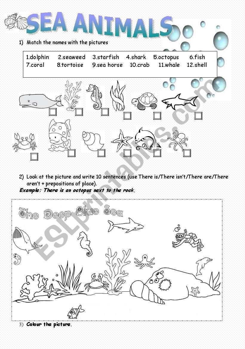 Sea Animal Worksheets Sea Animals Esl Worksheet by Carireguilleau