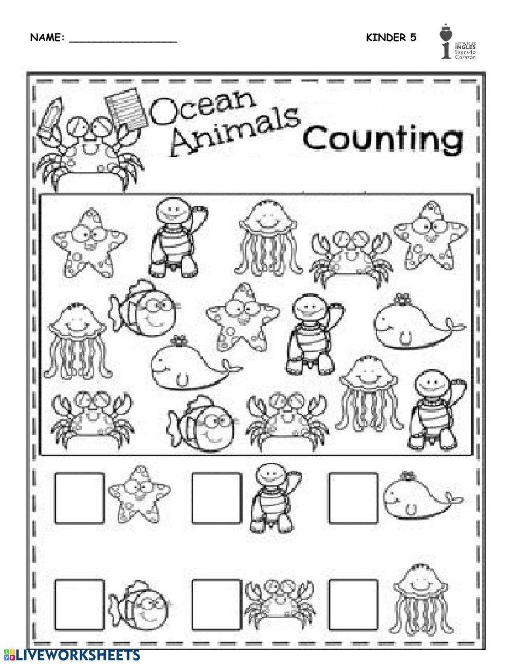 Sea Animal Worksheets Sea Animals Worksheet