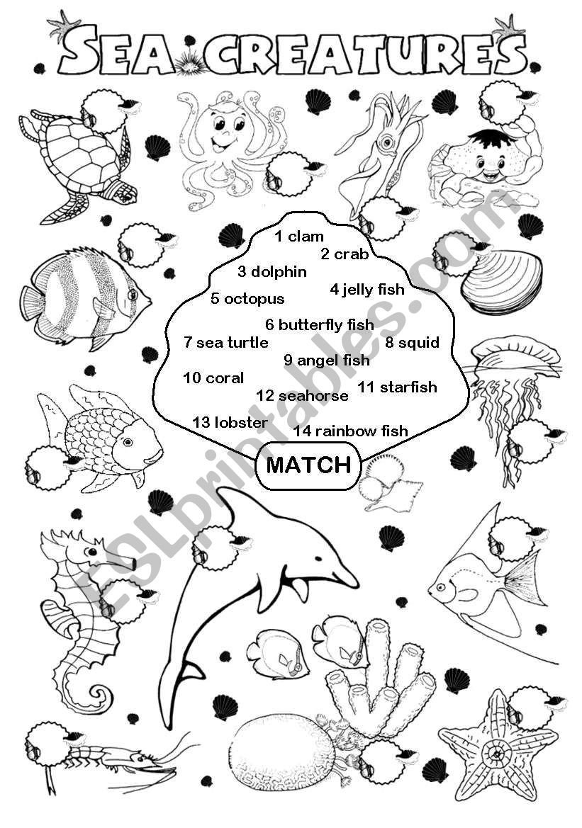 Sea Animal Worksheets Sea Creatures Esl Worksheet by Gabitza