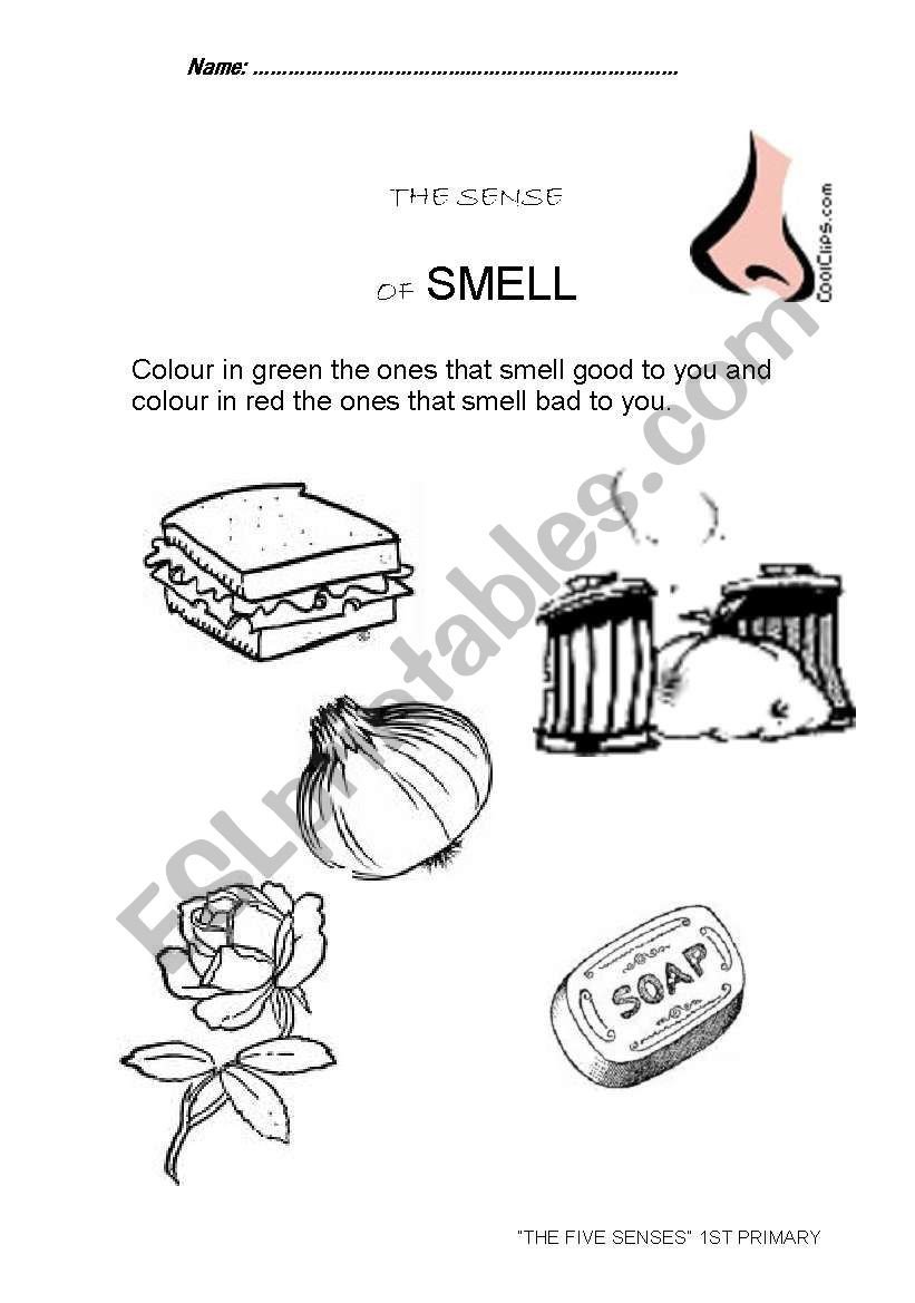 Sense Of Smell Worksheets the Smell Sense Esl Worksheet by Titania77