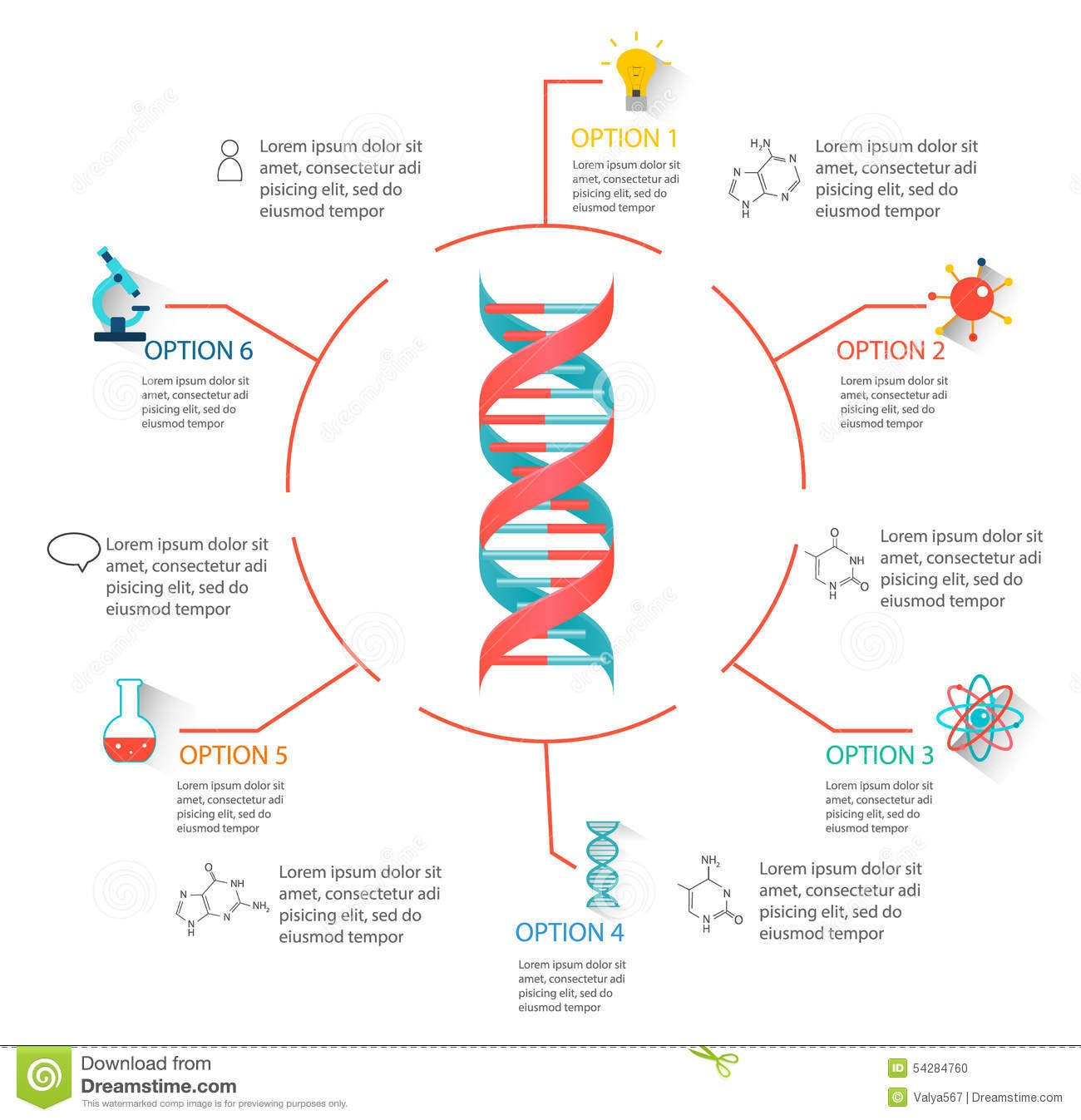 Skills Worksheet Dna Structure Dna Structure Concept Map Worksheet