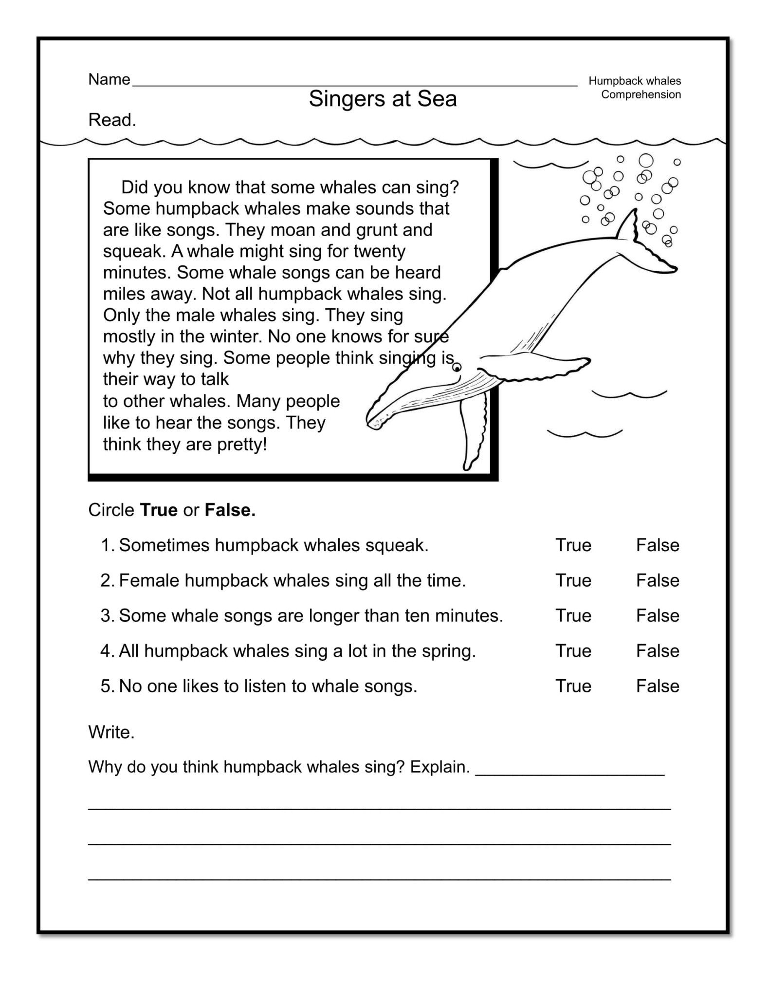 Spring Comprehension Worksheets Good Examples 1st Grade Worksheets Free Download