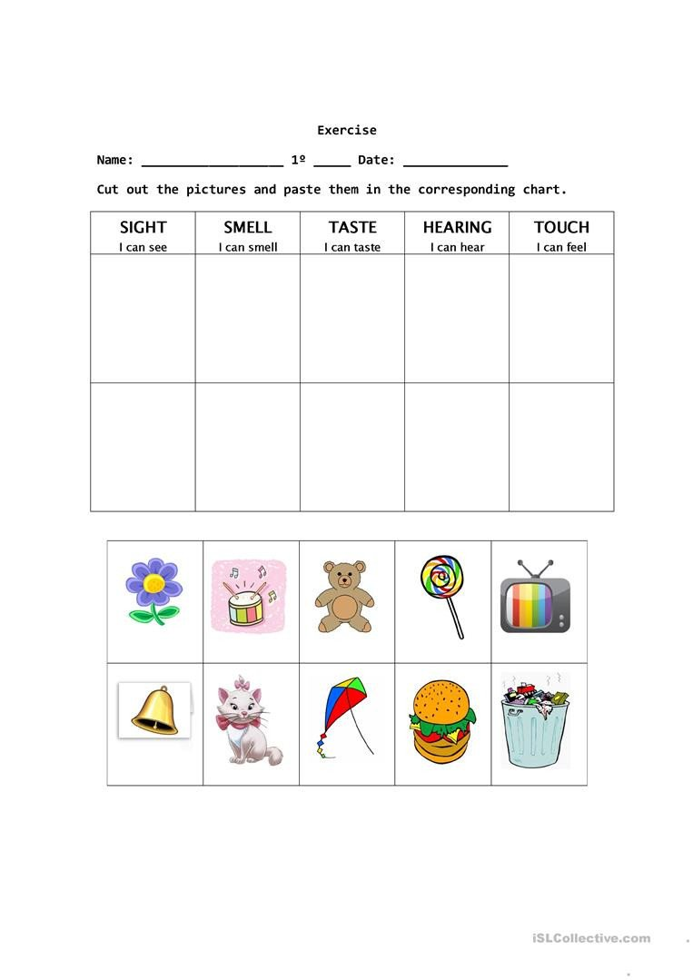 The Five Senses Worksheets the Five Senses English Esl Worksheets for Distance