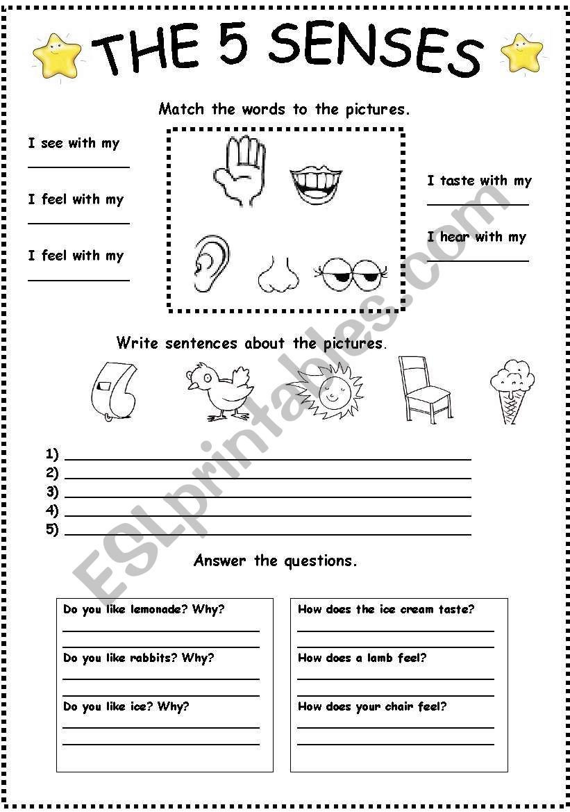 The Five Senses Worksheets the Five Senses Esl Worksheet by Popina