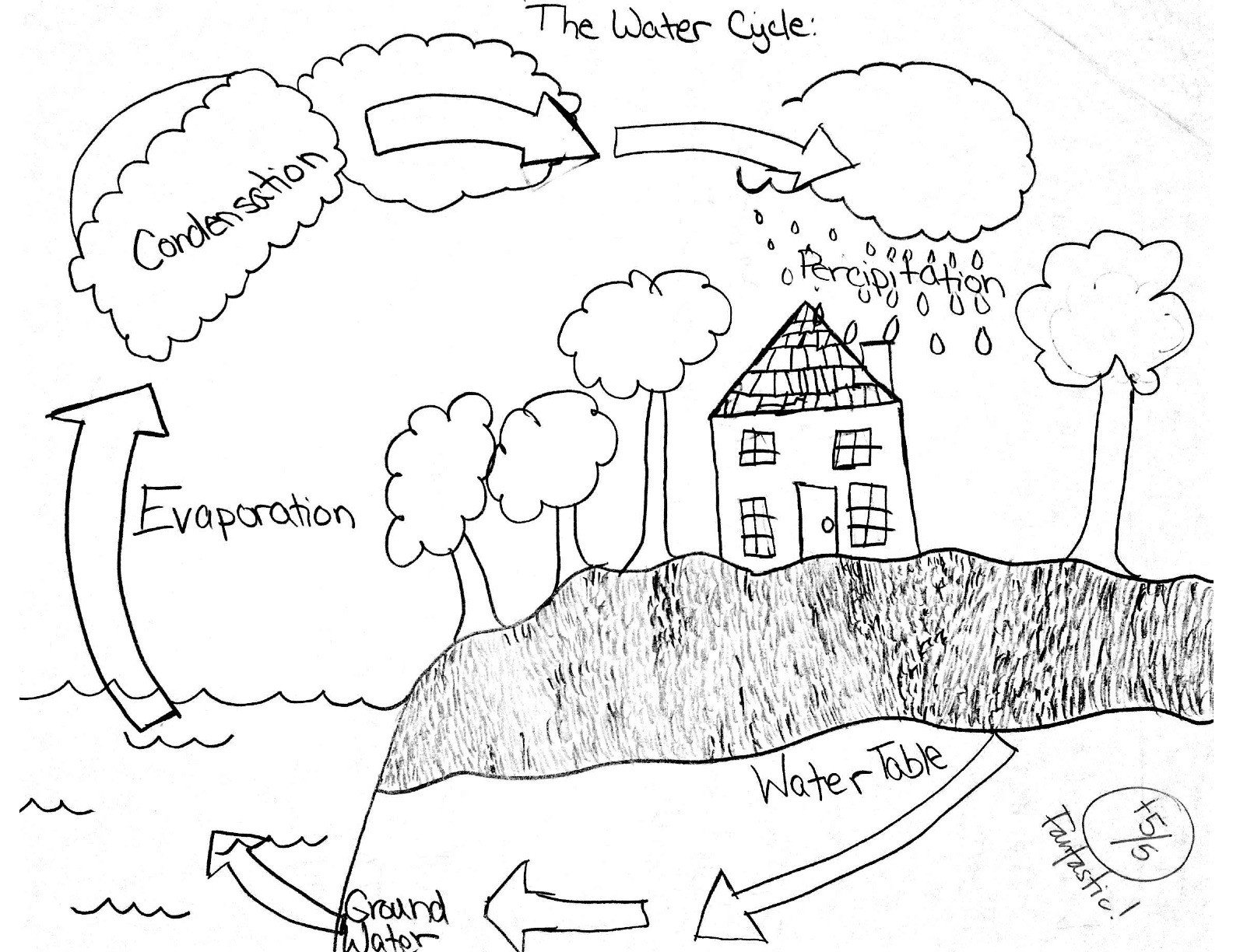 Water Cycle Worksheets 2nd Grade Water Cycle Worksheet for Kindergarten Cycles In Nature Free