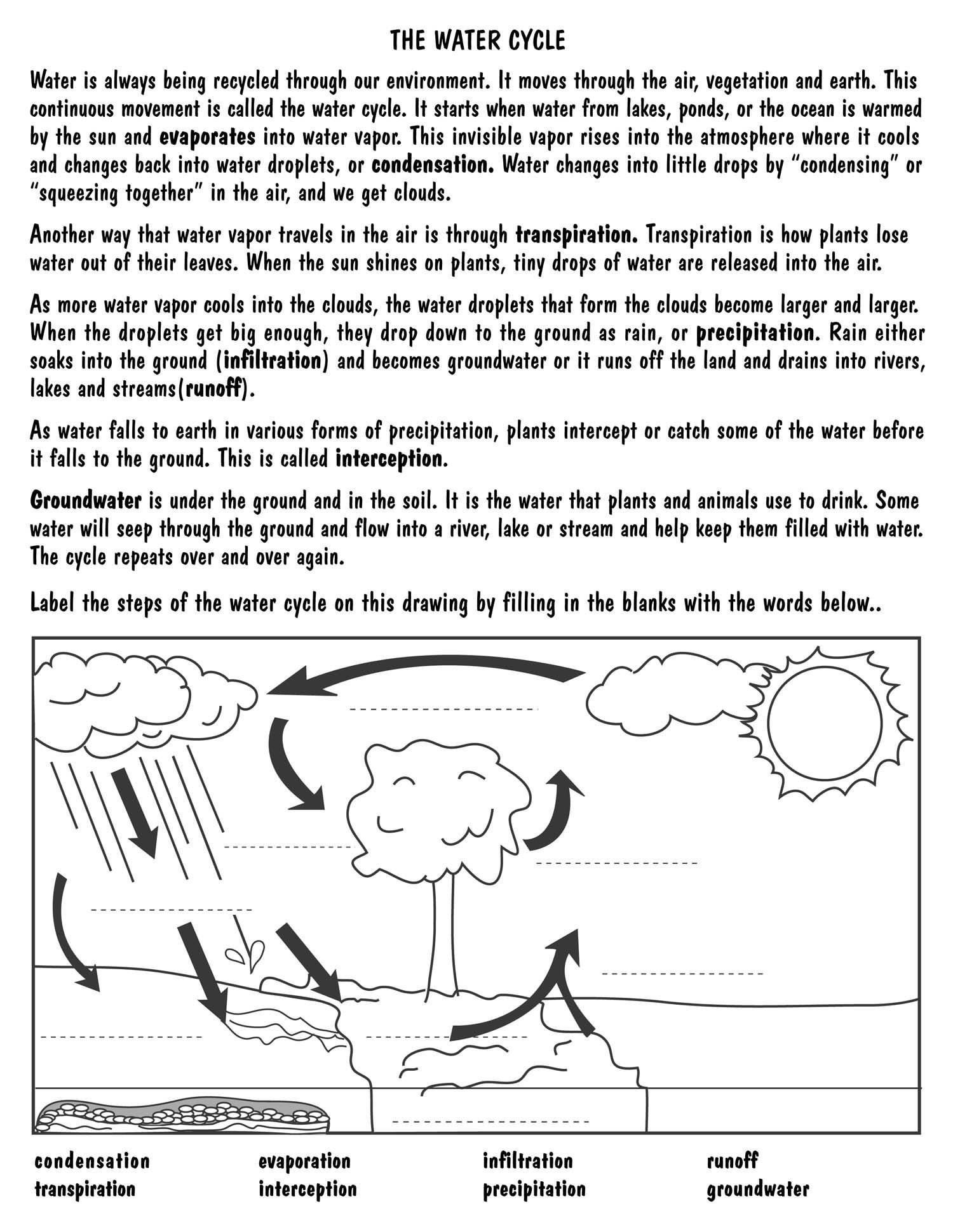 Water Cycle Worksheets 2nd Grade Weather Cycle