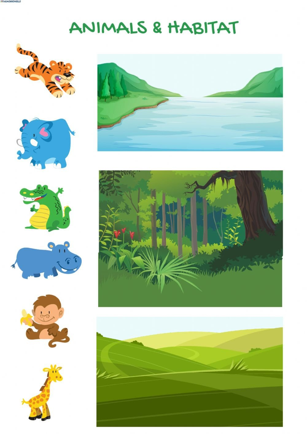 Animals and their Habitat Worksheets Animals & their Habitat Interactive Worksheet