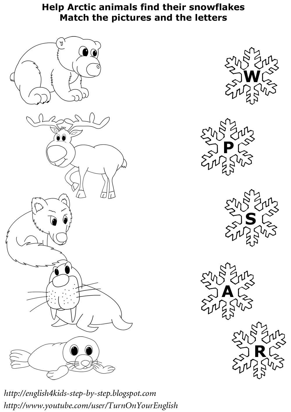 Animals In Winter Worksheet English for Kids Step by Step Arctic Animals song for
