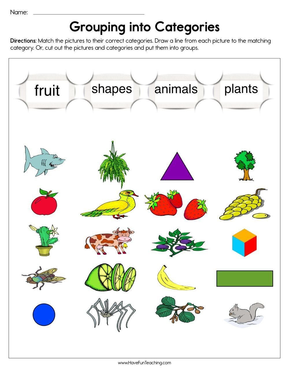 Grouping into Categories Worksheet in 2020