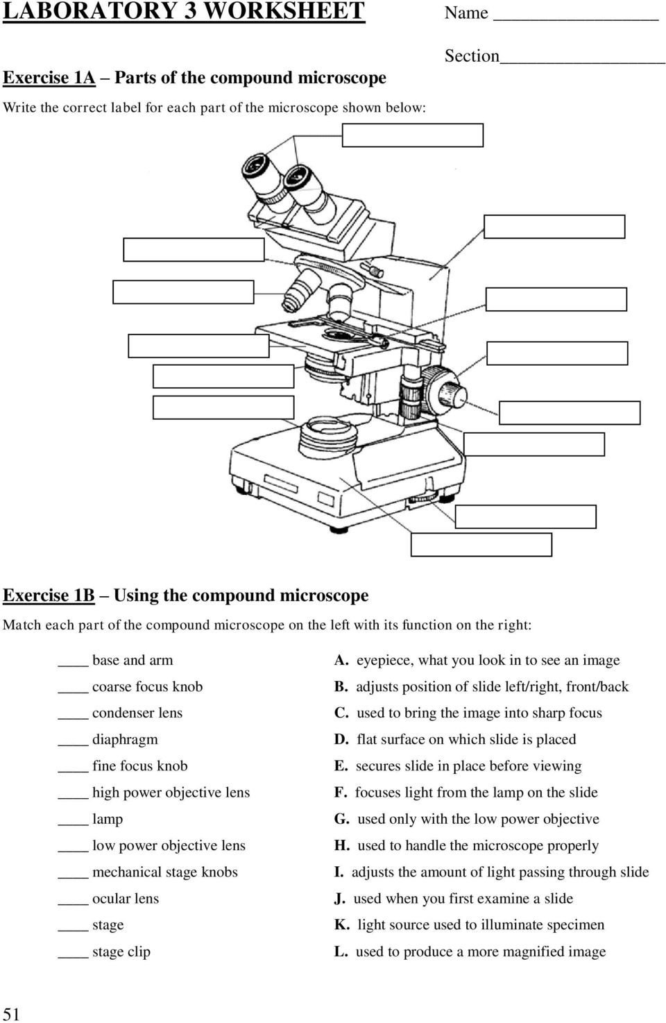 Lab 3 use of the microscope