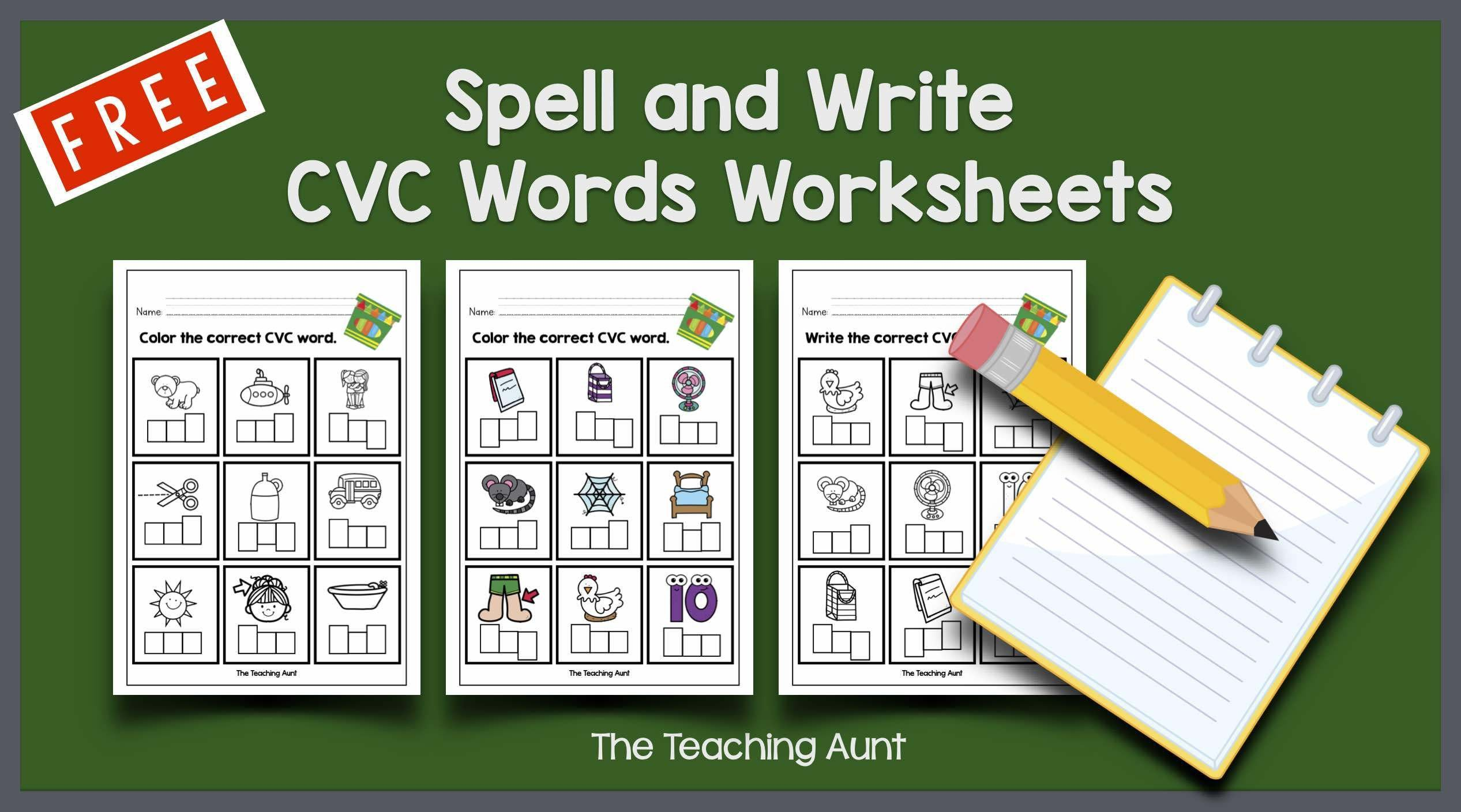 Free Spell and Write CVC Words Worksheets