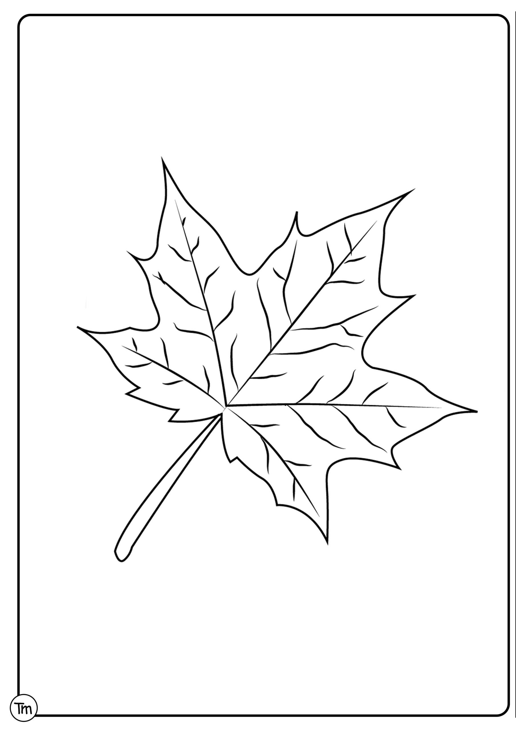 Leaf Worksheets for Kindergarten Easy Fall Craft for Preschoolers Teachersmag Leaf Worksheets