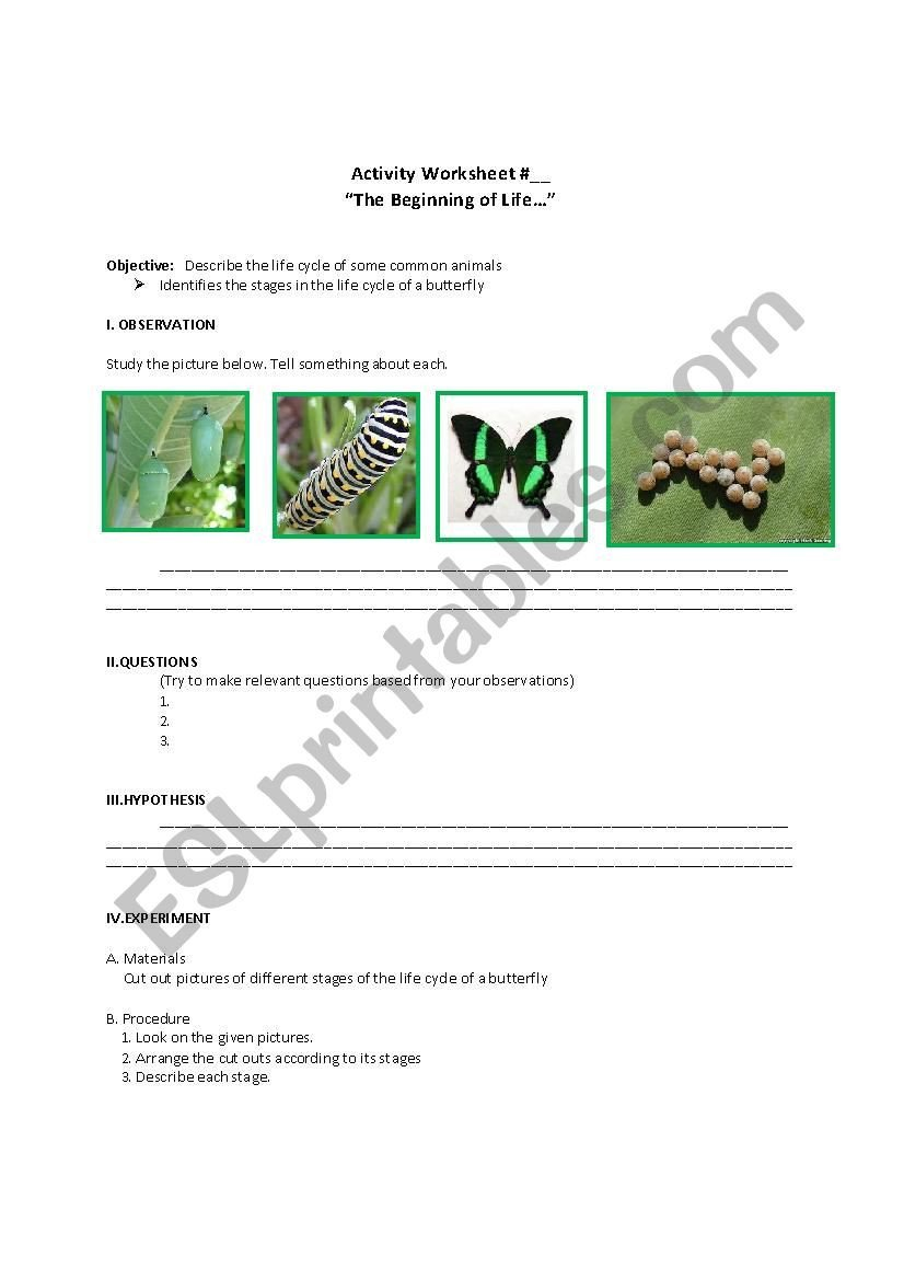 Life Cycle Of Animals Worksheet Life Cycle Of Mon Animals Esl Worksheet by Arnel A