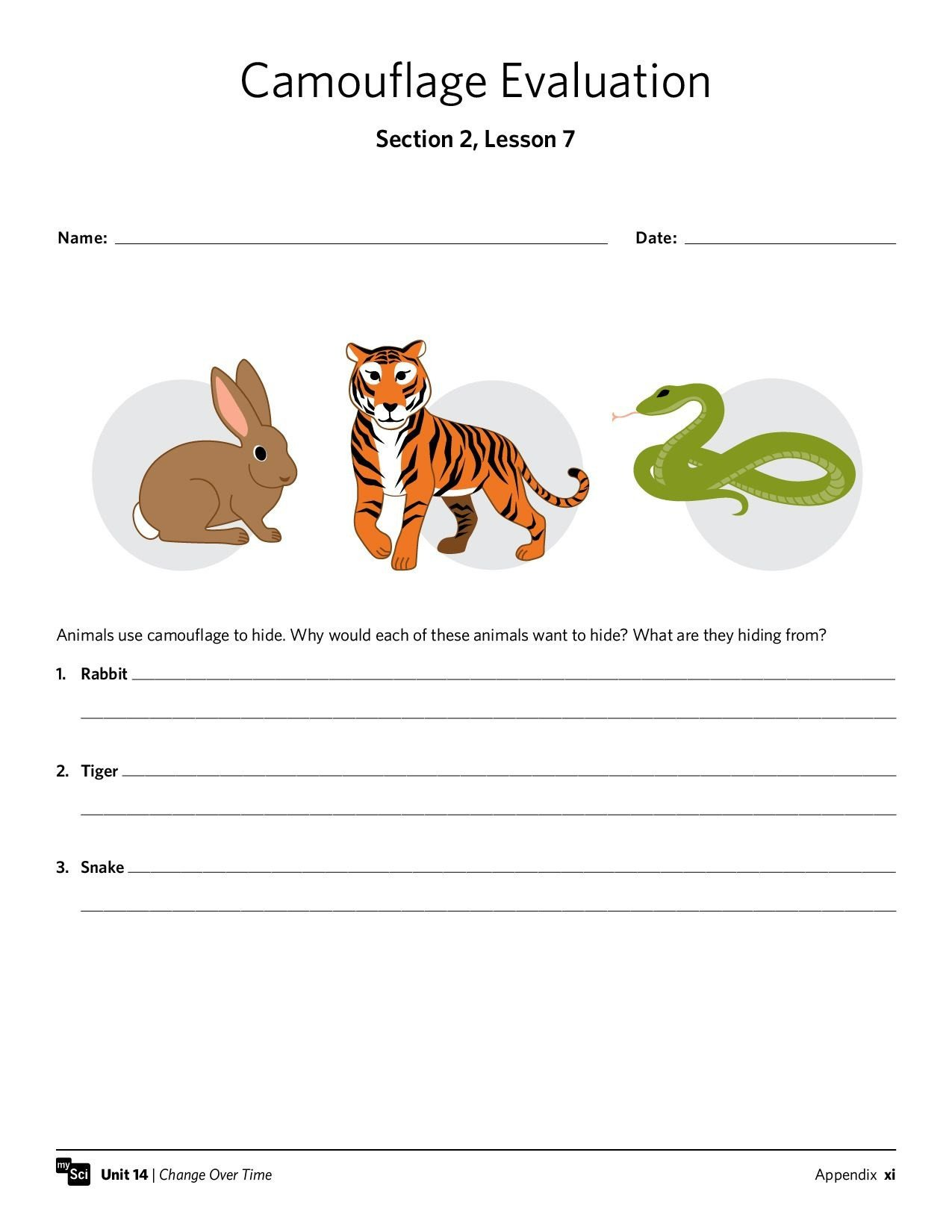mysci unit 14 isp third grade third grade grade 1 worksheets free printable worksheets animal adaptations