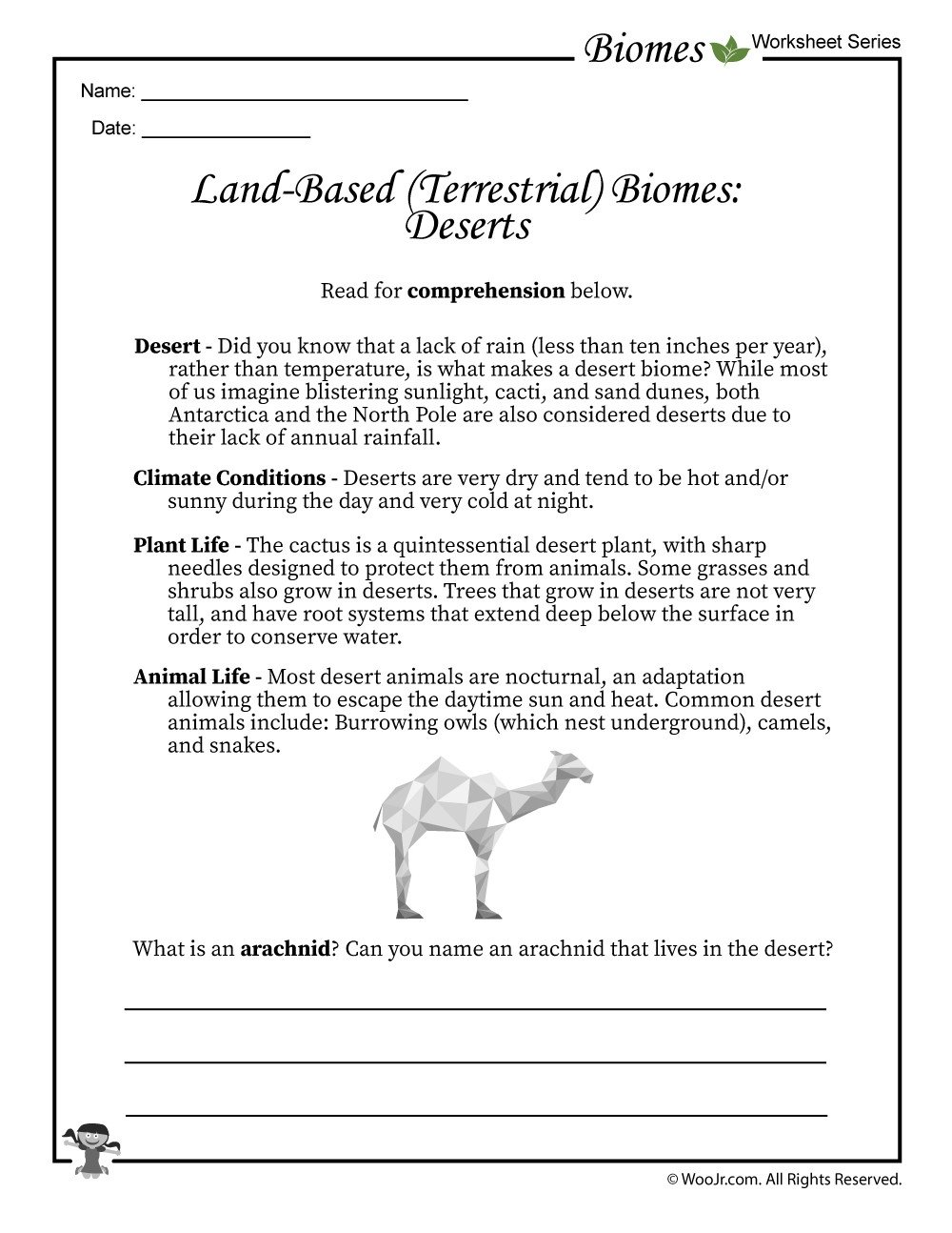 Plant and Animal Adaptations Worksheets Desert Biomes Worksheet