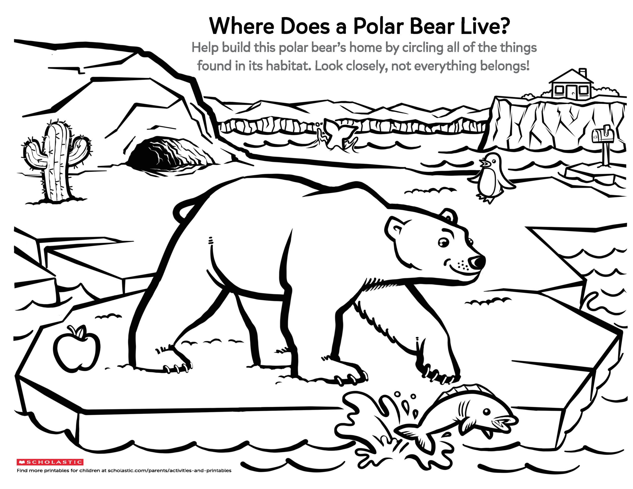 Polar Bear Worksheets Kindergarten Learn About A Polar Bear S Home