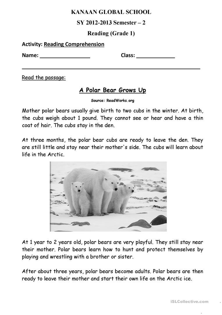 Polar Bear Worksheets Kindergarten Polar Bear Grows Up English Esl Worksheets for Distance