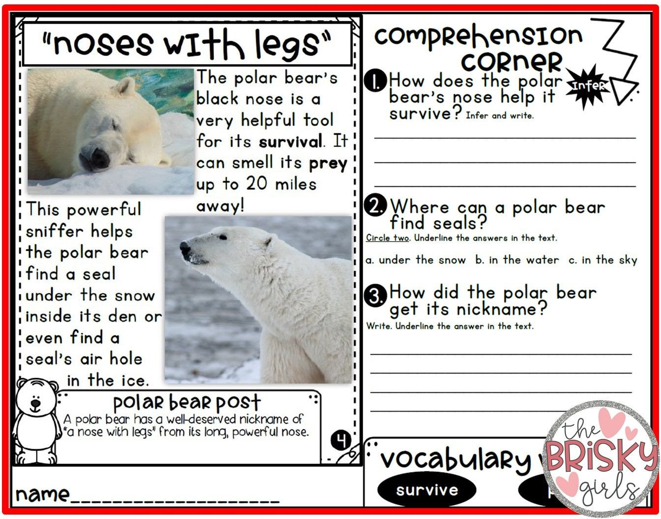 Polar Bear Worksheets Kindergarten Polar Bears First Grade Polar Bears Kindergarten In 2020