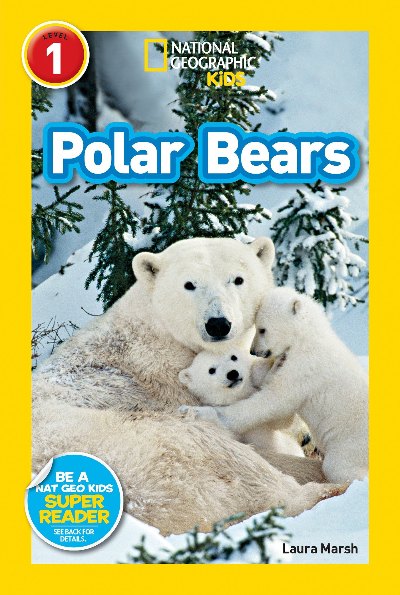 Polar Bear Worksheets Kindergarten Polar Bears National Geographic Kids Printables Classroom