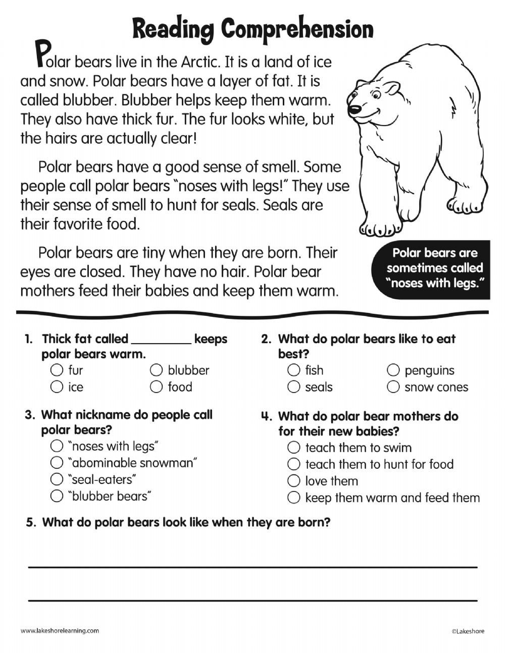 Polar Bear Worksheets Kindergarten Reading Prehension Polar Bear Interactive Worksheet
