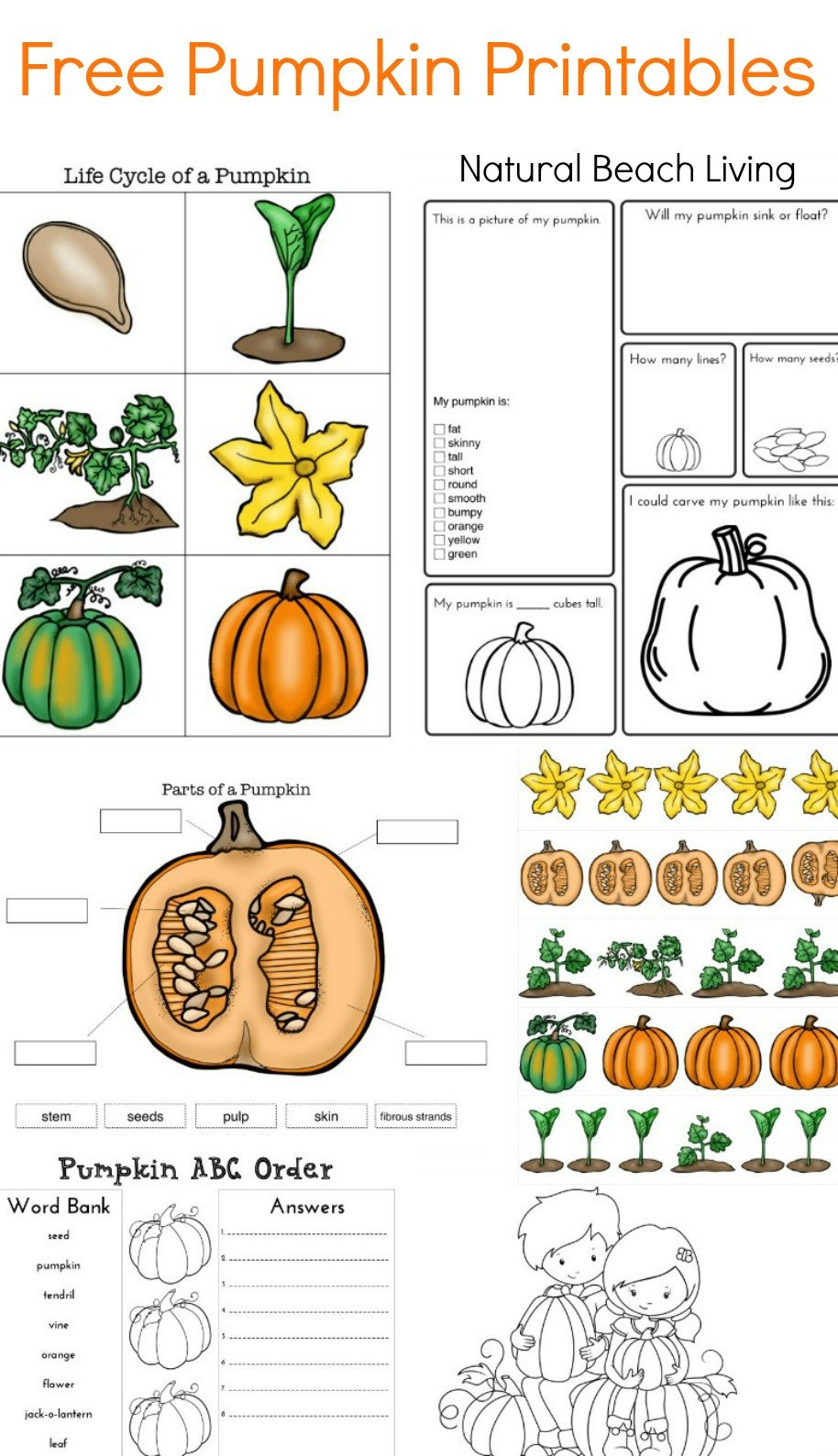 pumpkin printables pin
