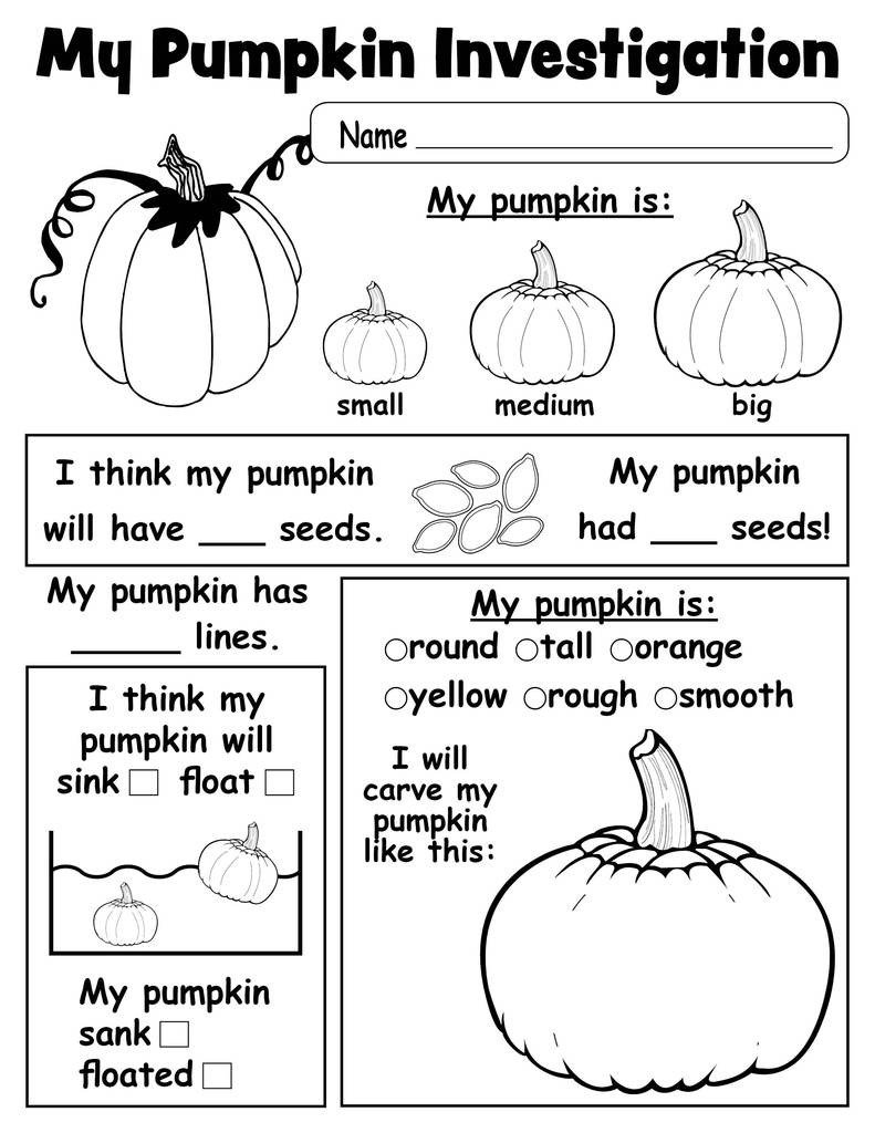 Pumpkin Worksheets for Kindergarten Pumpkin Investigation Worksheet Printable