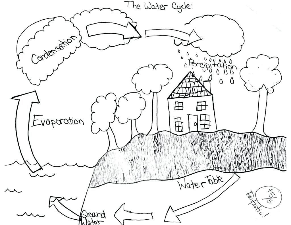 Water Cycle Coloring Worksheet 36 Simple Water Cycle Worksheet Ideas