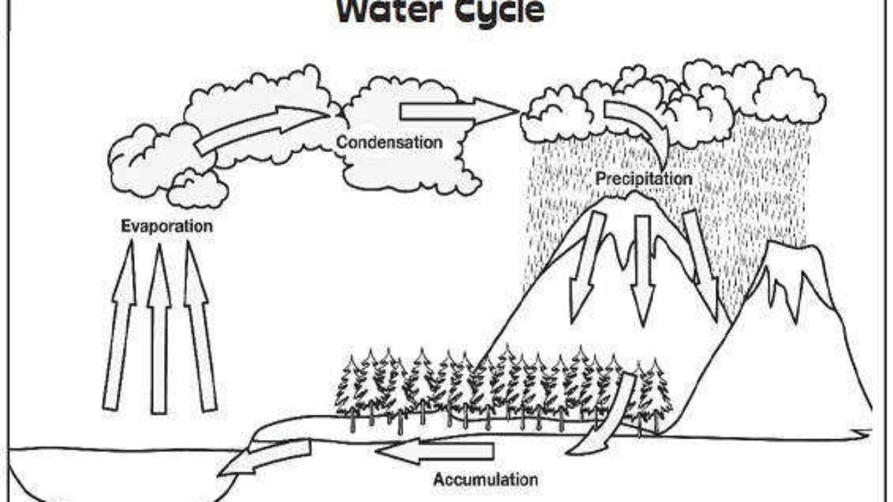 Water Cycle Coloring Worksheet 36 Simple Water Cycle Worksheet Ideas S Bacamajalah