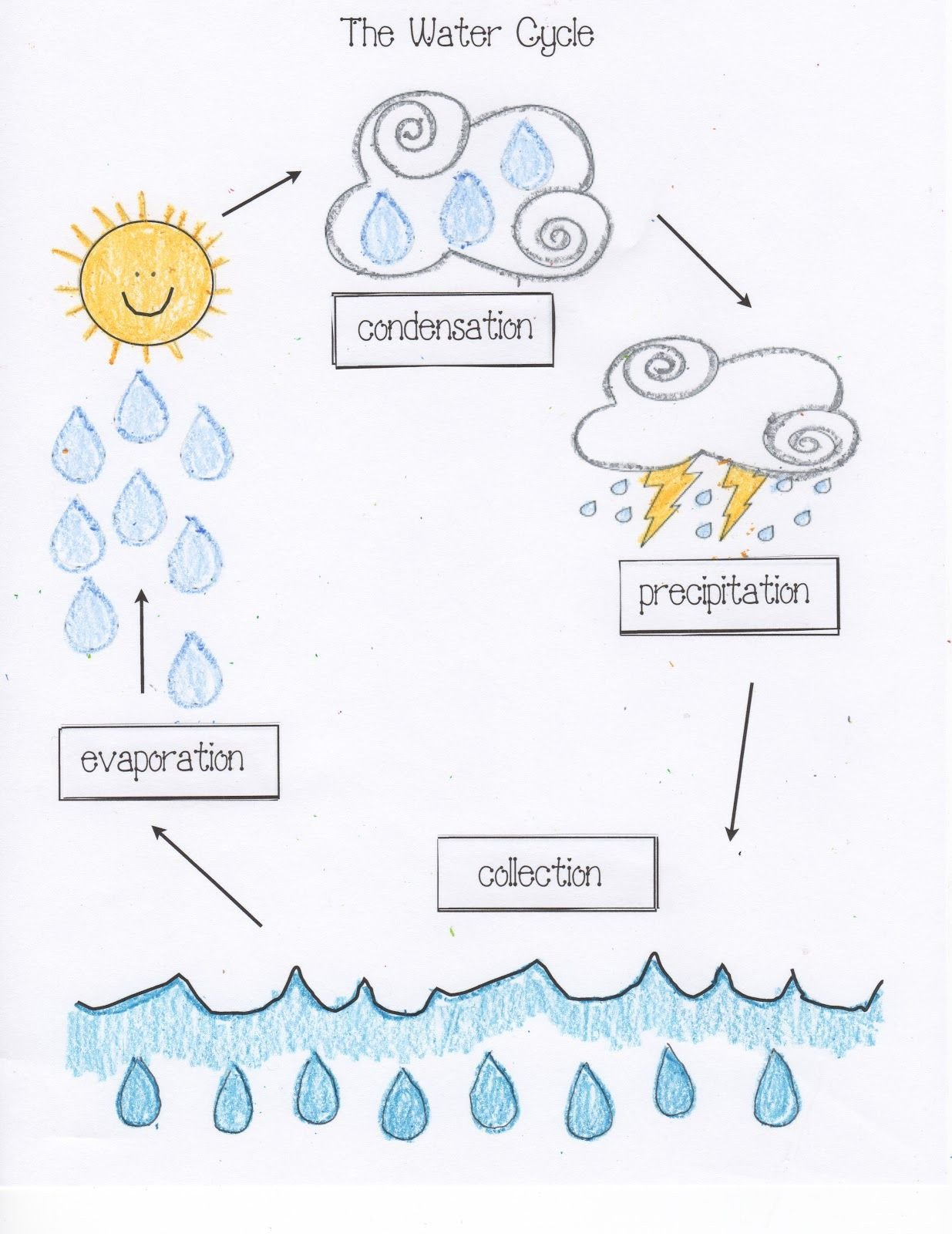 Water Cycle Kindergarten Worksheet Water Cycle Activities Classroom Freebies