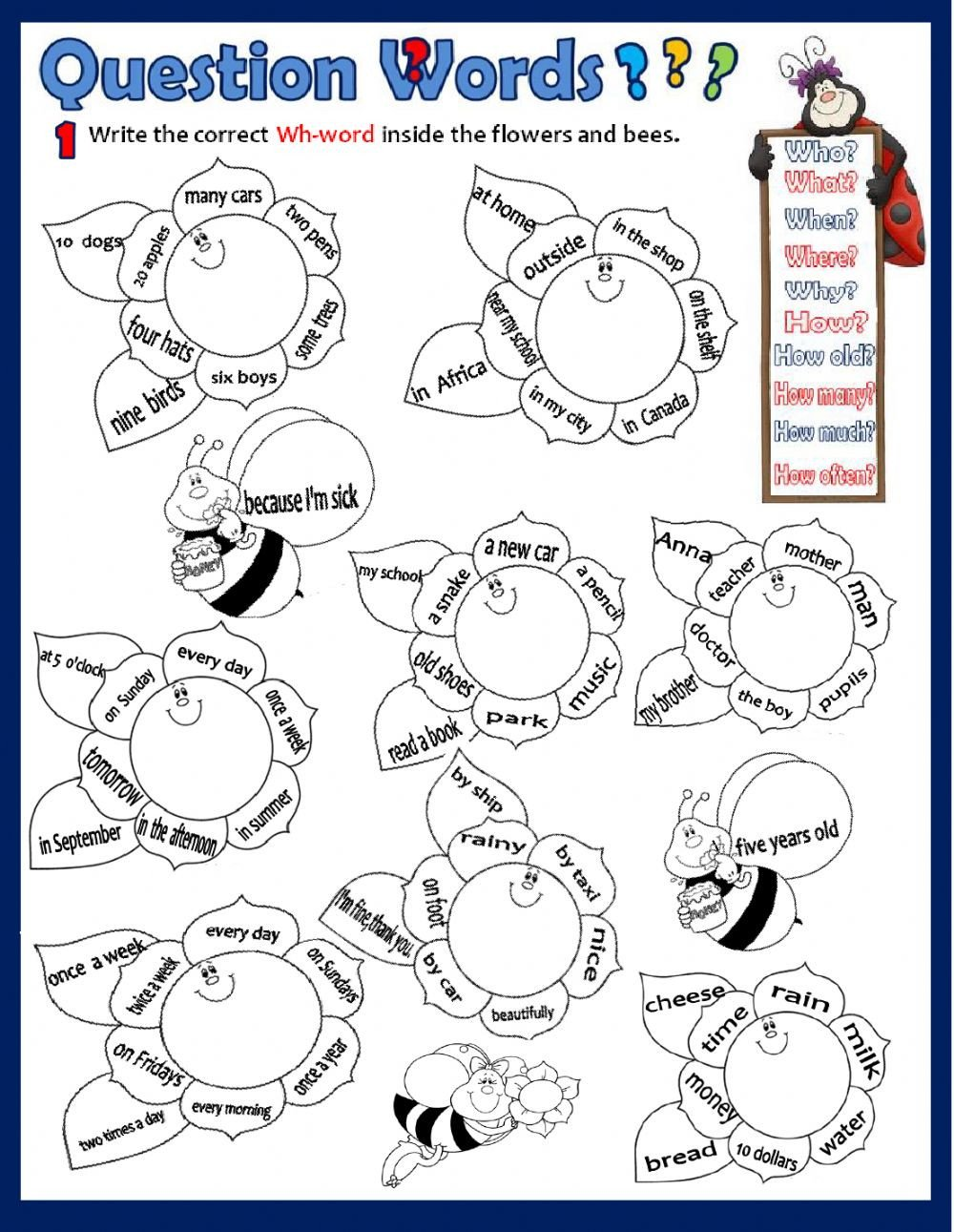 Wh Worksheets for Kindergarten Wh Questions Interactive Worksheet