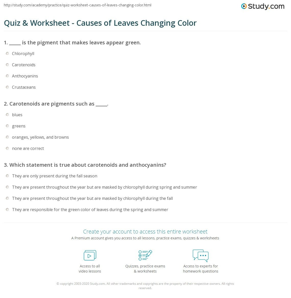 quiz worksheet causes of leaves changing color