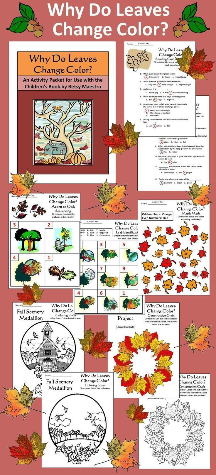 s=Why Leaves Change Color Science For Kids Fun Facts To