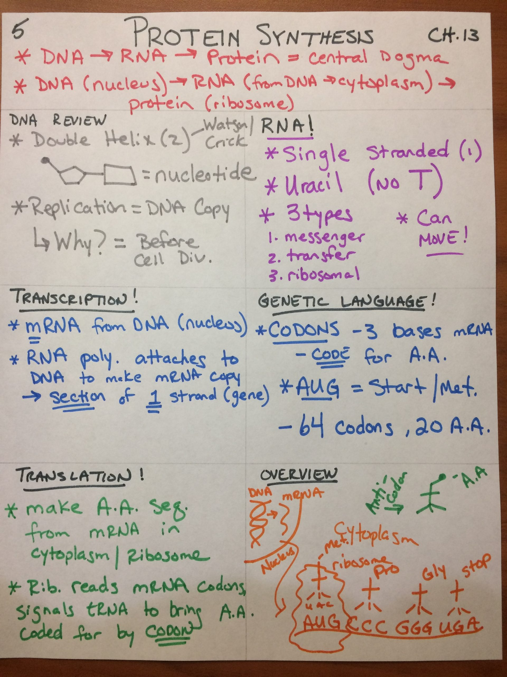 ps notes 5