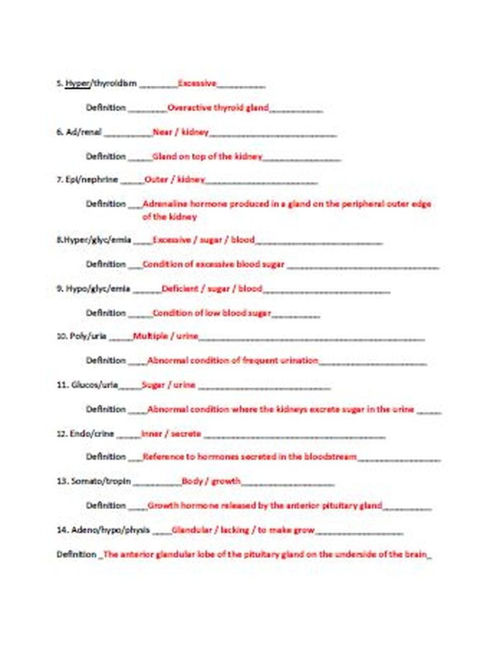 Endocrine System Coloring Worksheet Endocrine System Unit Latin Root Word Worksheet