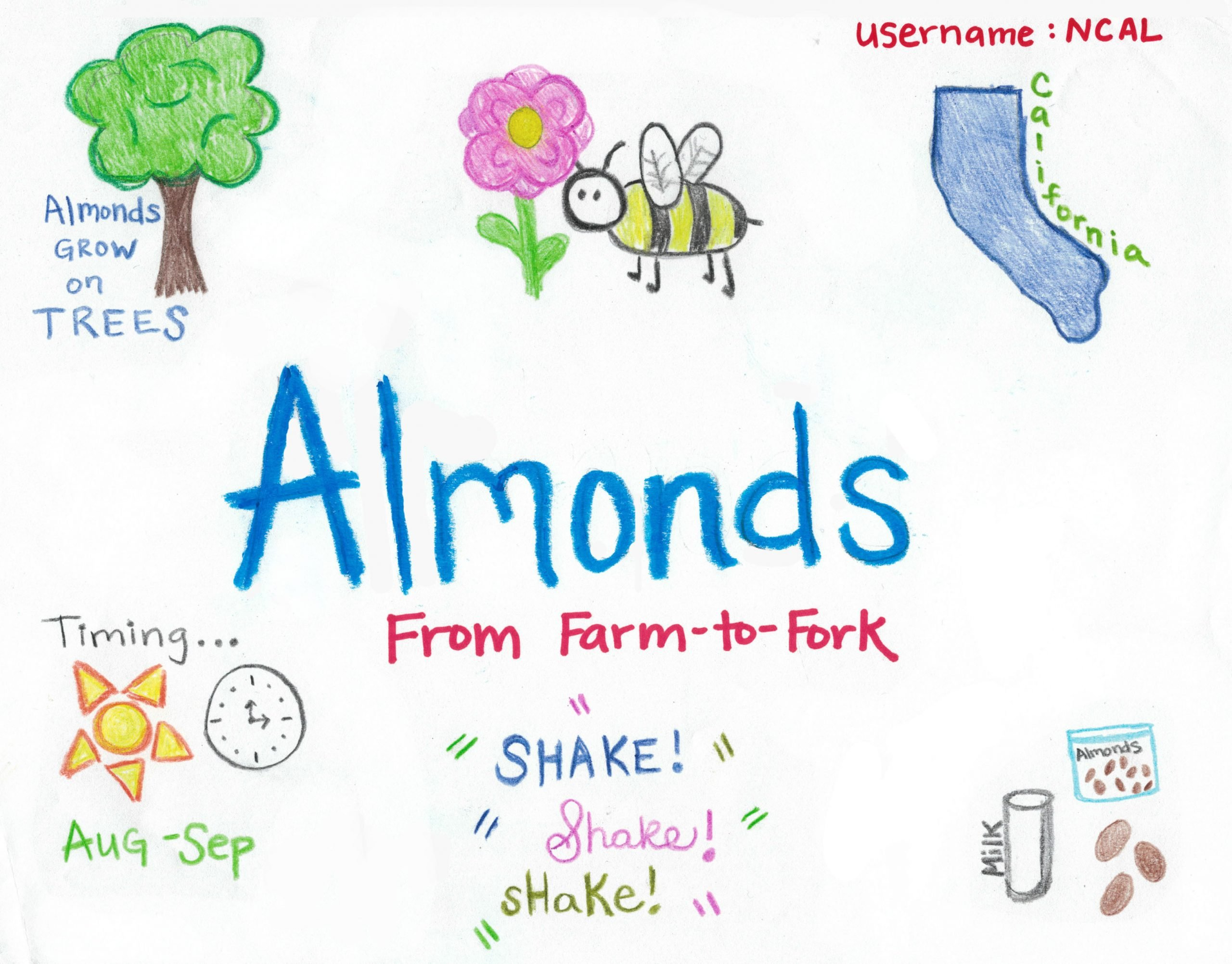 From Farm to Table Worksheets National Agriculture In the Classroom