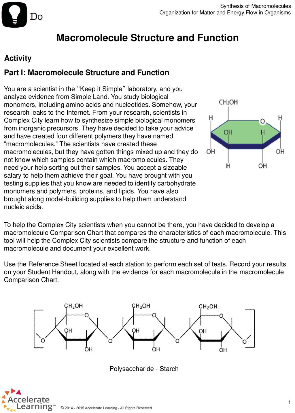 Macromolecule Structure and Function