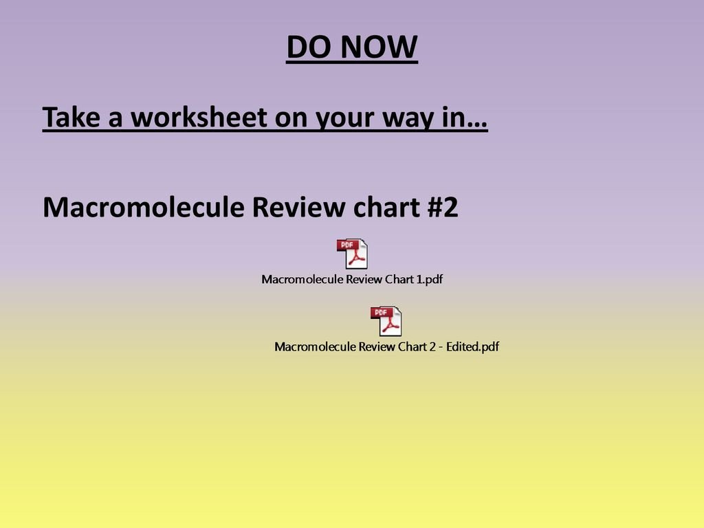 Macromolecule Comparison Table Worksheet Macromolecule Chart Pdf Dfw