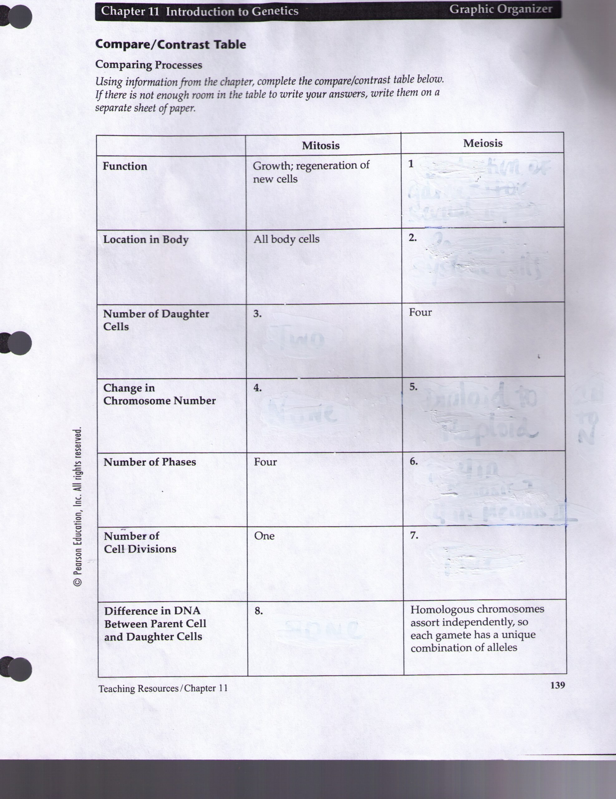 Macromolecule Comparison Table Worksheet Macromolecule Parison Table Worksheet Promotiontablecovers