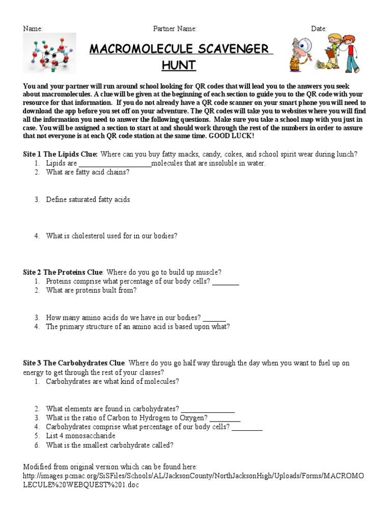 Macromolecule Comparison Table Worksheet Macromolecule Scavenger Hunt Macromolecules