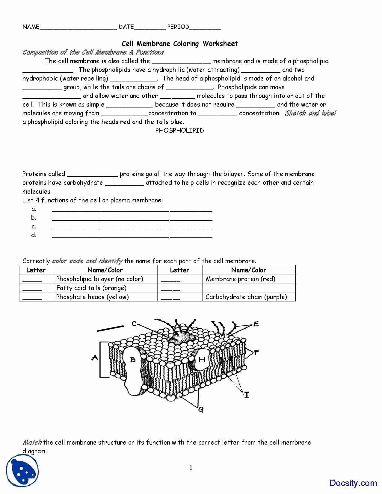 Plasma Membrane Coloring Worksheet Cell Membrane Coloring Worksheet Luxury Cell Membrane