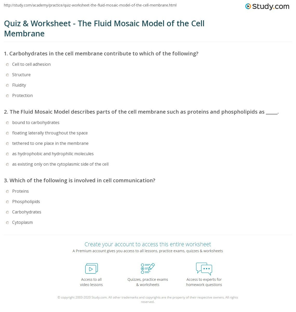 quiz worksheet the fluid mosaic model of the cell membrane