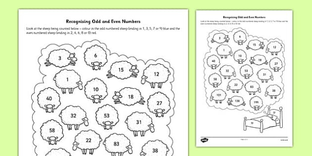 t he 353 recognising odd and even numbers activity sheet