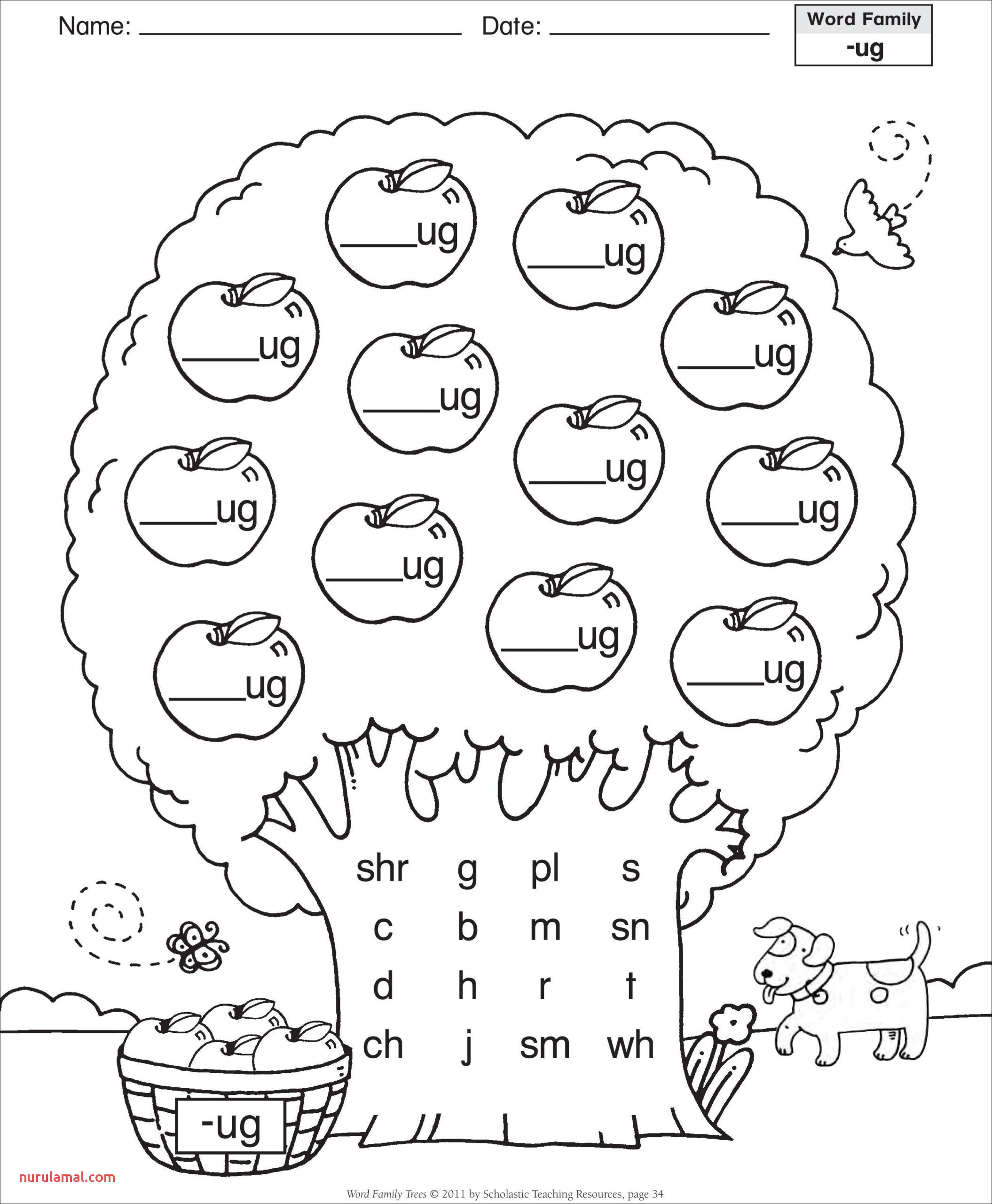 Multiplying Fractions Visual Worksheet Worksheets Free Water Cycle Worksheets for 5th Grade