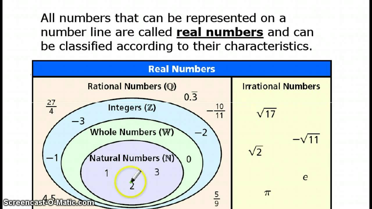 Real Numbers Chart Worksheet Classification Of Real Numbers