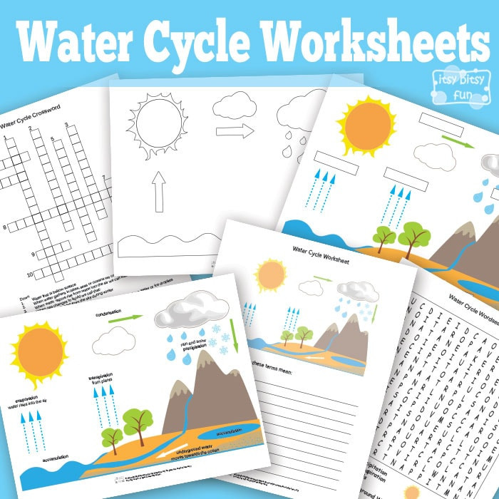 Free Printable Water Cycle Worksheets