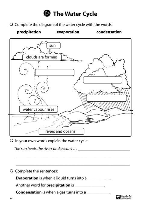 junior scientists book 2 water cycle activity sheet
