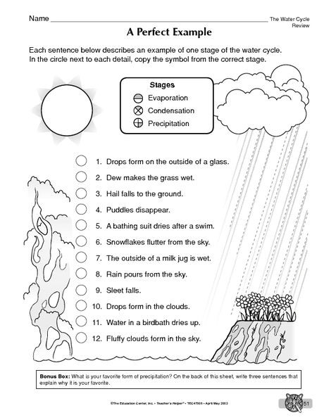 Water Cycle Printable Worksheet Science Worksheet Water Cycle the Mailbox