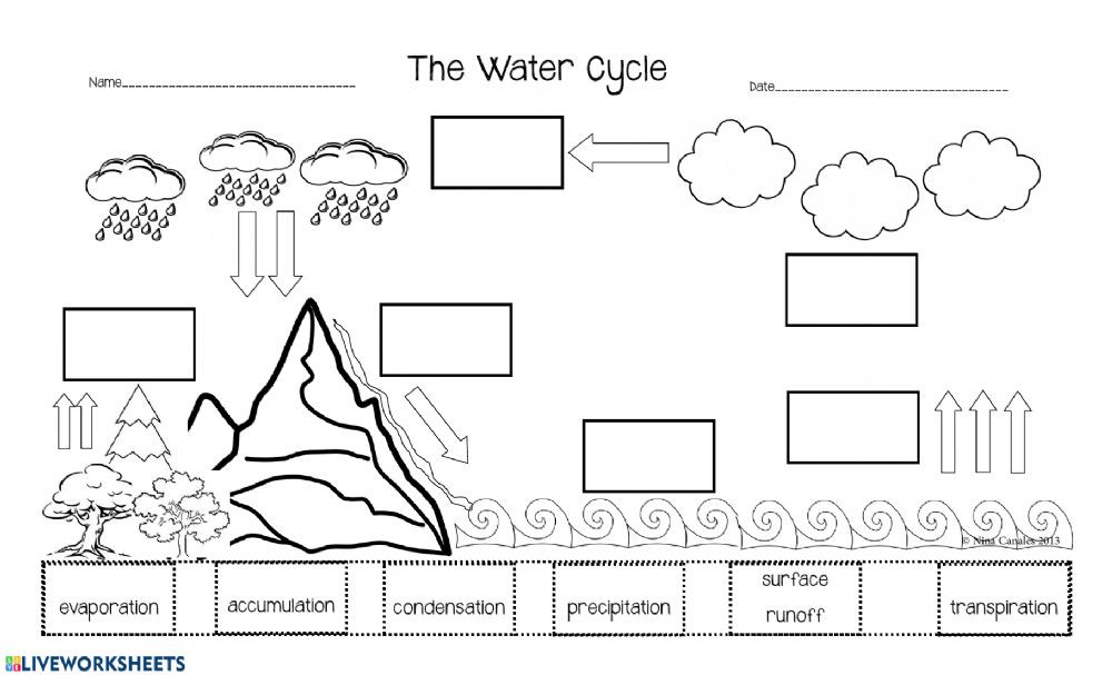 Water Cycle Printable Worksheet the Water Cycle assessment 1 Worksheet